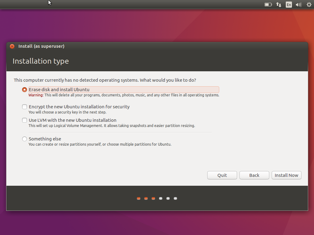 Ubuntu Disk Options